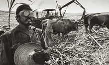 Masters Of Photography: Salgado, Beaton & More
